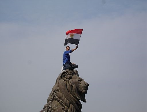 A picture of an Egyptian protester during the 2011 Egyptian revolution holding the Egyptian flag.